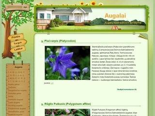 Apie augalus