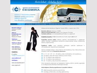 Tolimųjų kelionių autobusais organizavimas