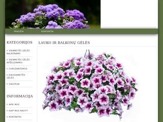 Lauko ir balkonų gėlės