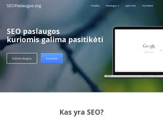 Seopaslaugos.org – Features
